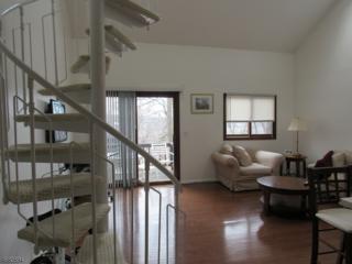1 Gray Rock Dr, Unit 10, Vernon Twp., NJ 07462 (MLS #3357232) :: The Dekanski Home Selling Team
