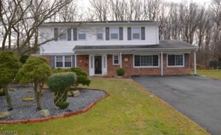33 Queens Rd, Rockaway Twp., NJ 07866 (MLS #3357404) :: The Dekanski Home Selling Team