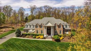 2 Caruso Ct, Bridgewater Twp., NJ 08807 (MLS #3357488) :: The Dekanski Home Selling Team