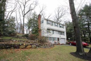025 Lookout Rd, Mountain Lakes Boro, NJ 07046 (MLS #3357612) :: The Dekanski Home Selling Team