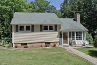 10 White Birch Trl, Rockaway Twp., NJ 07866 (MLS #3357667) :: The Dekanski Home Selling Team