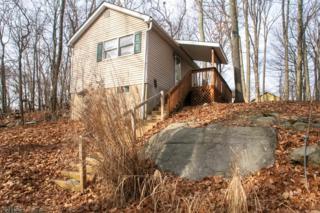 134 Madison Trl, Hopatcong Boro, NJ 07843 (MLS #3357727) :: The Dekanski Home Selling Team