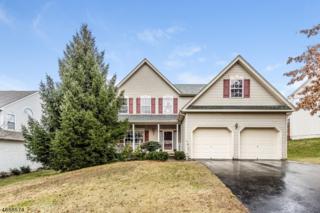 8 Wharton Way, High Bridge Boro, NJ 08829 (MLS #3357997) :: The Dekanski Home Selling Team