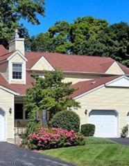 53 Carriage Ln, Newton Town, NJ 07860 (MLS #3358484) :: The Dekanski Home Selling Team