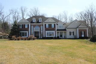 1 Windemere Way, Sparta Twp., NJ 07871 (MLS #3358527) :: The Dekanski Home Selling Team