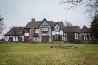 124 Woodview Dr, Montgomery Twp., NJ 08502 (MLS #3358626) :: The Dekanski Home Selling Team