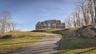 1 Felkay Ct, Kinnelon Boro, NJ 07405 (MLS #3358783) :: The Dekanski Home Selling Team