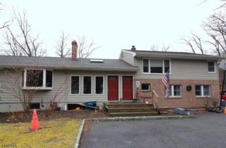 210 Conklintown Rd, Ringwood Boro, NJ 07456 (MLS #3358786) :: The Dekanski Home Selling Team
