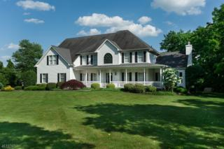 6 Mansfield Rd, Franklin Twp., NJ 08540 (MLS #3359251) :: The Dekanski Home Selling Team