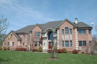 3 Kristina Way, Raritan Twp., NJ 08822 (MLS #3359386) :: The Dekanski Home Selling Team