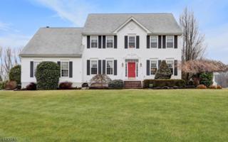 32 Music Mountain Blvd, West Amwell Twp., NJ 08530 (MLS #3359500) :: The Dekanski Home Selling Team