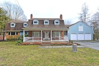 63 Meggins Rd, Rockaway Twp., NJ 07866 (MLS #3359626) :: The Dekanski Home Selling Team