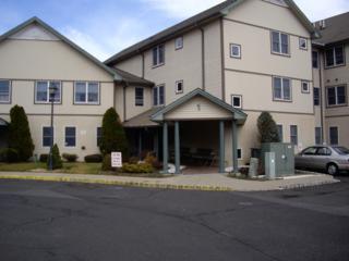 95 Park Edge, Berkeley Heights Twp., NJ 07922 (MLS #3359681) :: The Dekanski Home Selling Team