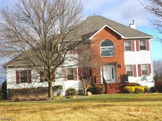 1233 Orchard Dr, Hillsborough Twp., NJ 08844 (MLS #3359769) :: The Dekanski Home Selling Team