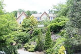 1 Vizcaya Ct, Wayne Twp., NJ 07470 (MLS #3359834) :: The Dekanski Home Selling Team