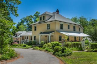 116 Laurel Hill Rd, Mountain Lakes Boro, NJ 07046 (MLS #3360131) :: The Dekanski Home Selling Team
