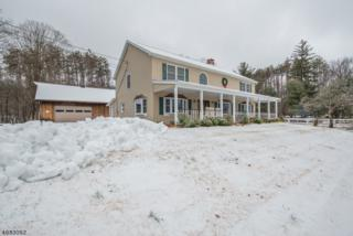 1059 Union Valley Rd, West Milford Twp., NJ 07480 (MLS #3360173) :: The Dekanski Home Selling Team