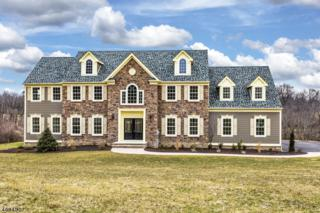 14 Partridge Run, Raritan Twp., NJ 08822 (MLS #3360255) :: The Dekanski Home Selling Team