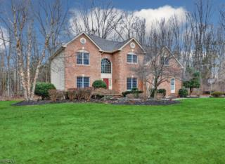 27 Concord Ln, Montgomery Twp., NJ 08558 (MLS #3360639) :: The Dekanski Home Selling Team