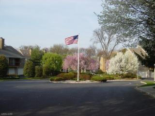 11 Tulip Crescent, Unit 1A, Little Falls Twp., NJ 07424 (MLS #3360689) :: The Dekanski Home Selling Team