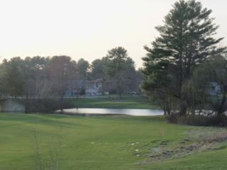 310-C S. Shore, Montague Twp., NJ 07827 (MLS #3360694) :: The Dekanski Home Selling Team