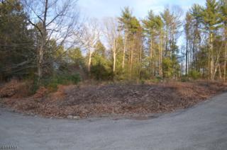 270 Old Chimney Ridge Rd, Montague Twp., NJ 07827 (MLS #3360763) :: The Dekanski Home Selling Team