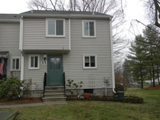 33 Fox Tail Ln, Hardyston Twp., NJ 07419 (MLS #3360775) :: The Dekanski Home Selling Team