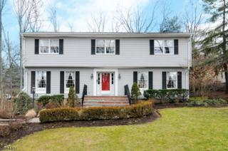 43 Powderhorn Dr, Wayne Twp., NJ 07470 (MLS #3361010) :: The Dekanski Home Selling Team