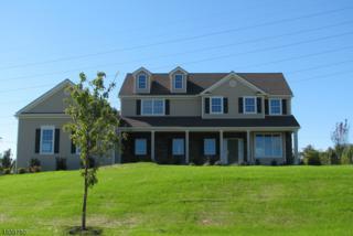 18 Highlands Way, Lopatcong Twp., NJ 08865 (MLS #3361077) :: The Dekanski Home Selling Team