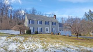 923 Route 517, Vernon Twp., NJ 07418 (MLS #3361287) :: The Dekanski Home Selling Team