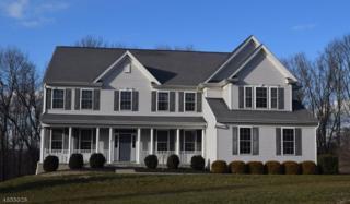 4 Northridge Ct, Washington Twp., NJ 07853 (MLS #3361293) :: The Dekanski Home Selling Team