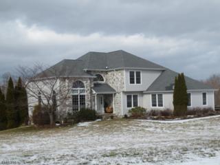 13 Fieldstone Dr, Vernon Twp., NJ 07461 (MLS #3361305) :: The Dekanski Home Selling Team
