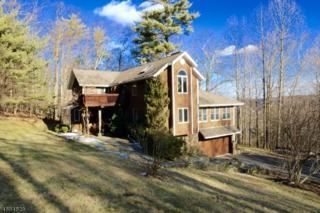 54 Cliff Rd, West Milford Twp., NJ 07480 (MLS #3361382) :: The Dekanski Home Selling Team