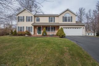 45 1st St, Mount Olive Twp., NJ 07828 (MLS #3361387) :: The Dekanski Home Selling Team
