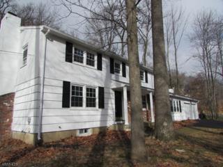 2 Lake Shore Dr, Montville Twp., NJ 07045 (MLS #3361555) :: The Dekanski Home Selling Team