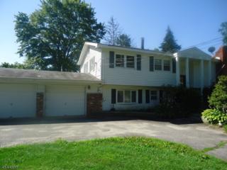 36 Lakeside Rd, West Milford Twp., NJ 07421 (MLS #3361584) :: The Dekanski Home Selling Team