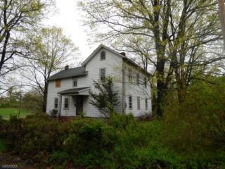 35 Larsen Rd, East Amwell Twp., NJ 08551 (MLS #3361916) :: The Dekanski Home Selling Team