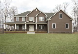24 Eagles Nest Rd, Green Twp., NJ 07821 (MLS #3361931) :: The Dekanski Home Selling Team