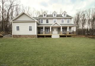 9 Fawn Hollow Dr, Green Twp., NJ 07821 (MLS #3361935) :: The Dekanski Home Selling Team