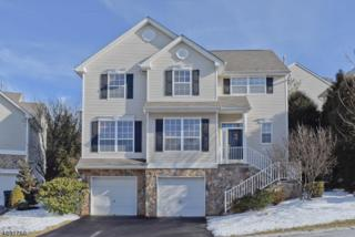 166 Winding Hill Dr, Mount Olive Twp., NJ 07840 (MLS #3361946) :: The Dekanski Home Selling Team