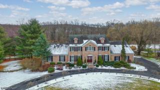 9 Hidden Acres Dr, Kinnelon Boro, NJ 07405 (MLS #3361996) :: The Dekanski Home Selling Team