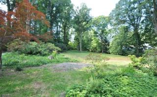 33 Countryside Drive, New Providence Boro, NJ 07901 (MLS #3362070) :: The Dekanski Home Selling Team