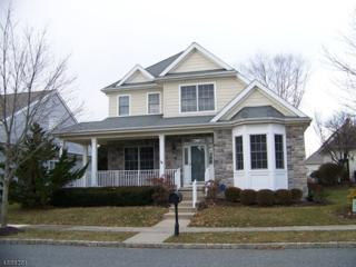 40 Falcon Way, Washington Twp., NJ 07882 (MLS #3362198) :: The Dekanski Home Selling Team