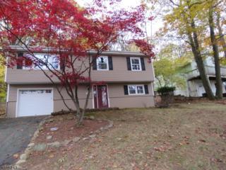 487 River Styx Rd, Hopatcong Boro, NJ 07843 (MLS #3362238) :: The Dekanski Home Selling Team