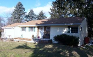 4 High Point Ter, Vernon Twp., NJ 07461 (MLS #3362307) :: The Dekanski Home Selling Team