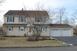 6 Madoc Trl, Jefferson Twp., NJ 07438 (MLS #3362329) :: The Dekanski Home Selling Team
