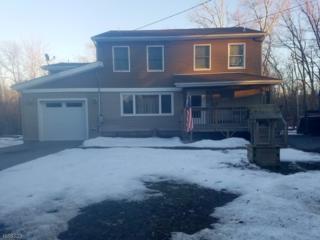 56 Cedar Tree Dr, Vernon Twp., NJ 07422 (MLS #3362667) :: The Dekanski Home Selling Team