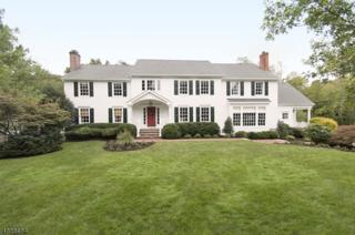 80 Westminster Rd, Chatham Twp., NJ 07928 (MLS #3362673) :: The Dekanski Home Selling Team