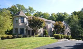 24 Douglas Dr, Sparta Twp., NJ 07871 (MLS #3362865) :: The Dekanski Home Selling Team