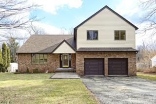 6 S Hillside Dr, Mount Olive Twp., NJ 07828 (MLS #3363045) :: The Dekanski Home Selling Team